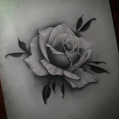 Good ol fashioned paper and pencil Skull Rose Tattoos, Rose Flower Tattoos, Black Rose Tattoos, Body Art Tattoos, Rose Drawing Tattoo, Realistic Rose Tattoo, Z Tattoo, Sketch Tattoo Design, Floral Tattoo Design