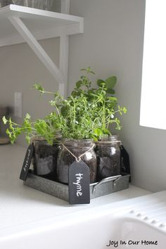Mason Jar Herb Garden | Joy in Our Home