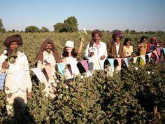 - Gujurat Fairtrade Cotton