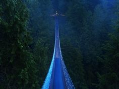 Capilano Suspension Bridge  Vancouver, BC