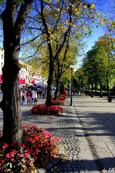 Shopping area in Oslo, Norway. Places To Travel, Places To See, Travel Local, Shopping Travel, Beautiful Streets, Beautiful Places, Bergen, Places Around The World, Around The Worlds