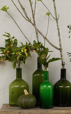 glass bottle vases http://rstyle.me/n/b3mx8r9te