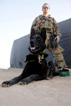 US Air Force Staff Sgt. Larry Harris, a Military Working Dog handler, with MWD Aaron prior to training at Kandahar Airfield, Afghanistan, July 9, 2012.
