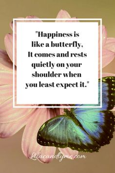 Happiness is like a butterfly quote