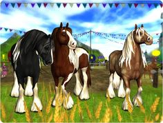 Finally, your beautiful Tinker horses!