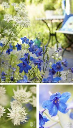 Weelderige, romantische stads tuin met blauwe, witte en lila bloemen. Urban Oasis. Romantic garden. Design: ©Jacqueline Volker www.lifestyleadviseur.nl. Image: Frans de Jong.