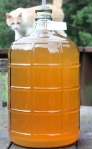 Homemade apple wine, made the old fashioned way.