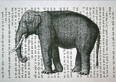 Elephant print on vintage Hindi book page, by CrowBiz. Other animal & language prints at www.crowbiz.etsy.com