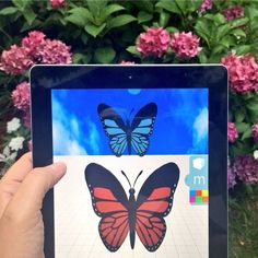Having fun #3Dmodeling #butterflies in the garden tday using Morphi's experimental PhotoAlbum tool + Shapes tool. #3dprinting #design #3ddesign #fun #butterfly #nature #ipad #ipadmini #create #creative #learn #steam #science #shapes #geometric #geometry #maker #makered #makermovement #3dprinter #3dmodel #3dprint #designoutside #summer #draw