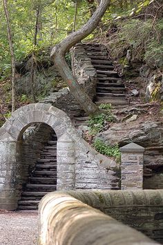 Go for an early morning hike at Wissahickon Park's hiking trails. #microcation