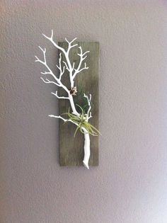 Ähnliche Artikel wie White Coral Branch Air Plant Holder on weathered Barnwood auf Etsy