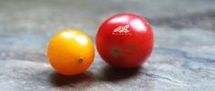 ♥ Garden of life ♥: Kosmetyczny piątek z Izą: maseczka z pomidora