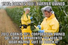 I don't know why they are wearing hazmat suits, but if it is to touch the corn, then I sincerely hope that isn't our food.