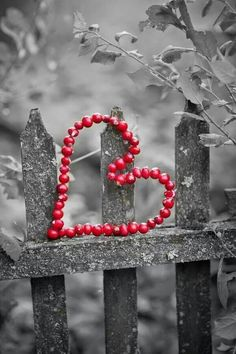 ~ Hearts