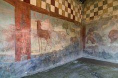 Animali domus marco lucretius  pompeii
