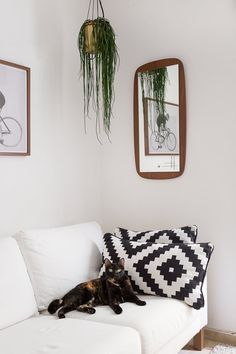 Their day-to-day is full of design and order, neatness, straight lines and charm, as is their small but smart space. They live with their two cats, Greta and Rita, the real owners of the sofa and the carpet.