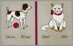 """Illustration from """"Animaux = Dierenprenten"""", a vintage Dutch children's picture book with images of animals and below the name in French and Dutch (1920s)"""