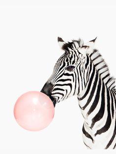Pink Digital Art - Zebra Pink Bubble Gum Minimalistic Modern Art Kids Room by Julia Emelianteva Ipad Art, Kids Wall Decor, Wall Art Decor, Zebra Print Walls, Image Maker, Pink Animals, Pink Bubbles, Room Posters, Kids Room Art