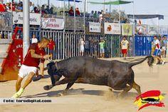 torodigital: La ganadería de Alberto Granchel en la segunda ta...