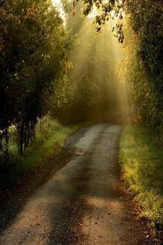 Sun Rays On Old Country Dirt Road.  Don't know where it is but I'm gonna find it and drive down it with my car.