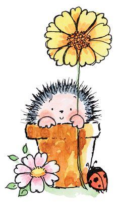hedgehog in flower pot