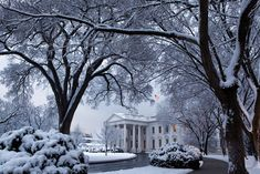 See a Pete Souza photo of the White House in the morning after snow. Snow Scenes, Winter Scenes, Inside The White House, Les Kennedy, Haunted Places, Spooky Places, Winter White, Winter Snow, Winter Fun