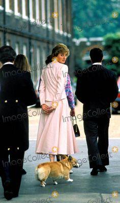 Princess Diana Photo: Alpha-Globe Photos Inc 1988 Princessdianaretro