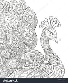 Peacock. Adult Antistress Coloring Page. Black And White Hand Drawn Doodle For Coloring Book Stock Vector Illustration 342442766 : Shutterstock