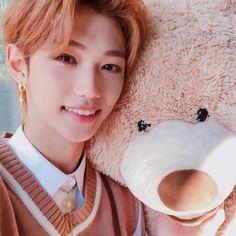 Stray Kids Felix Teddy Bear Sticker Changlix Kpop Cute | Etsy