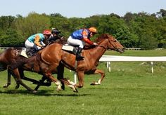 Slipstreaming Reduces Drag in Horse Racing up to 66 Percent