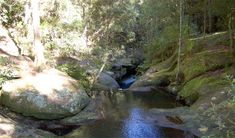 Looks like a nice place to take the kids for a day. Close to Cessnock. It's an easy bushwalk and can also go swimming there :) Rock Wall, Picnic Area, Nice Place, Family Adventure, Get Directions, Newcastle, Great Places, Walks, Circuit