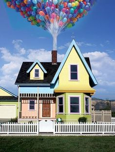 real life Up house!