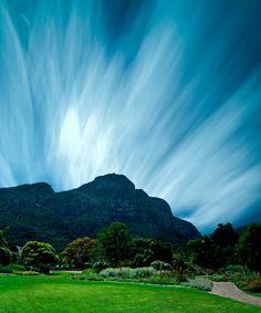 Kirstenbosch Botanical Gardens, Cape Town, South Africa.