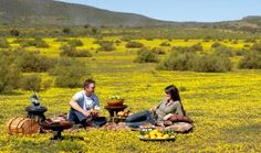 Escape to Bushmans Kloof, a heavenly wilderness reserve and retreat of unparalleled beauty and recreational diversity.