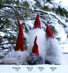 Tomte Couples