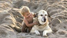 cani e bambini disabili - Cerca con Google