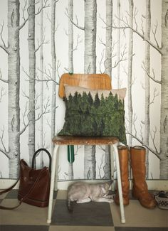 We have the wallpaper, just need the cushion... oh and the cat.