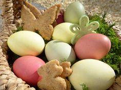 #bio #butterflies #children #colored #cookie #cookies #decoration #easter #easter bunny #easter eggs #easter greeting #easter nest #egg #family #gift #happy easter #healthy #looking for easter eggs #moss #nature #ost
