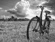Roadster bicyle