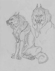 Cole bane needs a beer by sioSIN Animal Sketches, Animal Drawings, Drawing Sketches, Cool Drawings, Furry Wolf, Furry Art, Wolf Sketch, Werewolf Art, Creature Design