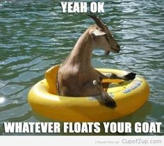 Yeah, OK, whatever floats your goat!