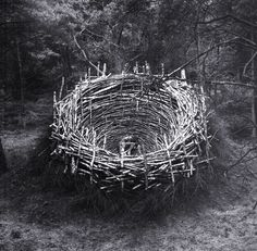 The Nest. Lineberg Heath. Germany. Nils-Udo. 1978.