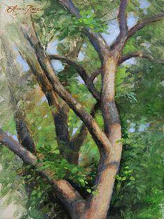 Dappled Woods by Anna Rose Bain