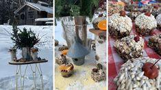 Creative ways to enjoy the outdoors during winter. Common Garden Plants, Bird Seed Ornaments, England Winter, Fine Gardening, Diy Garden Projects, Garden Photos, Winter Garden, Clematis, Cheryl