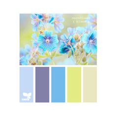 Design Seeds are color palettes created by designer Jessica Colaluca. Explore thousands of combinations to inspire your life's palette.