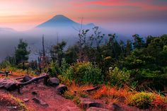 Photograph sikunir (dieng) - java island by Tut Bolank on 500px