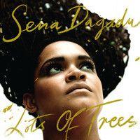 SENA DAGADU-LOTS OF TREES by Irie Maffia Production on SoundCloud