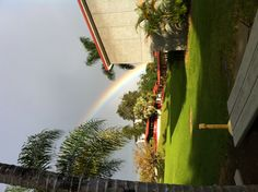 Rainbow in Hilo!  Taken a the University of Hawaii - Hilo.