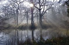 Hampstead Heath on of the four Places to Experience the Countryside in London