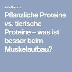 Pflanzliche Proteine vs. tierische Proteine – was ist besser beim Muskelaufbau?